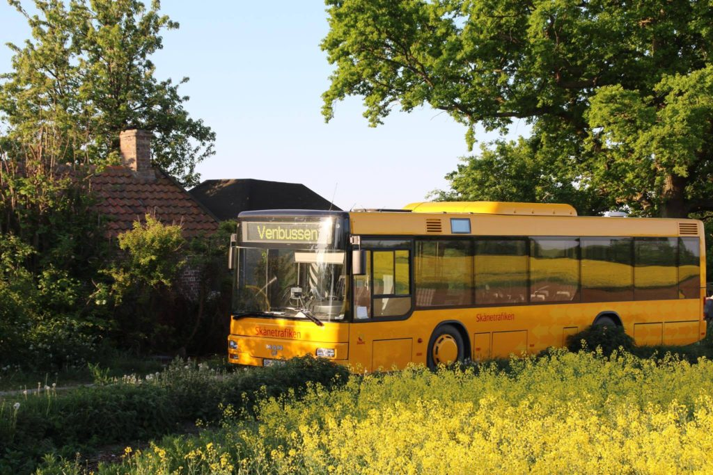 Stora gula bussen